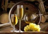 Húsz borászat szerepel a debreceni bormustrán