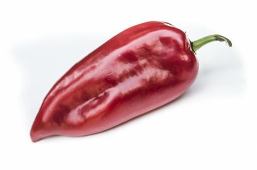 Kápia paprika fajták