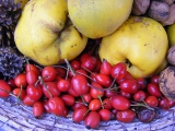 Natúrparkok ízei: Helyi termékek, gasztronómiai különlegességek