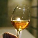 A Tokaj Kereskedőház 100 ezer mázsa szőlő felvásárlását tervezi